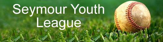 Semyour Youth League